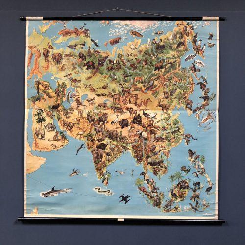 Landkaart van Azië met flora en fauna