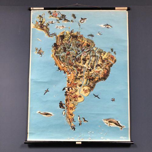 Landkaart van Zuid-Amerika met flora en fauna