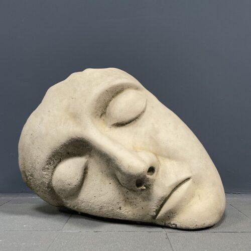Sereen slapend gezicht