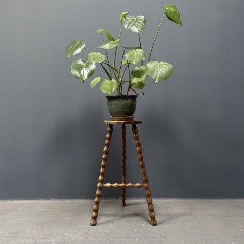Hoge plantentafel met bolpoten